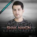 دانلود آهنگ جدید احمد سعیدی بنام شک نکن