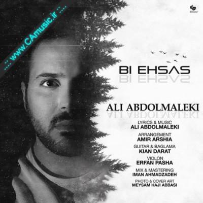Ali-Abdolmaleki-Bi-Ehsas