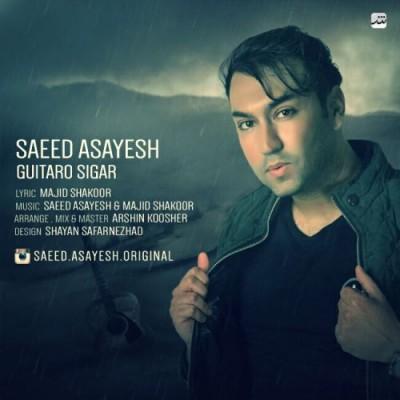 Saeed-Asayesh-Guitar-O-Sigar