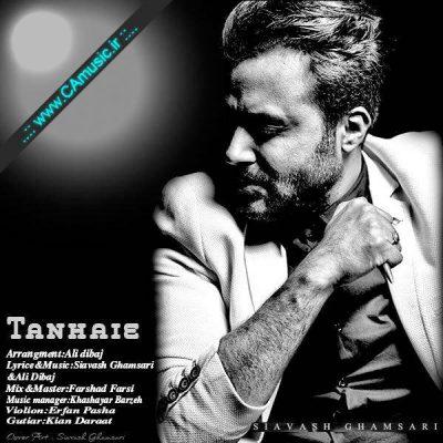 Siavash-Ghamsari-Tanhaie
